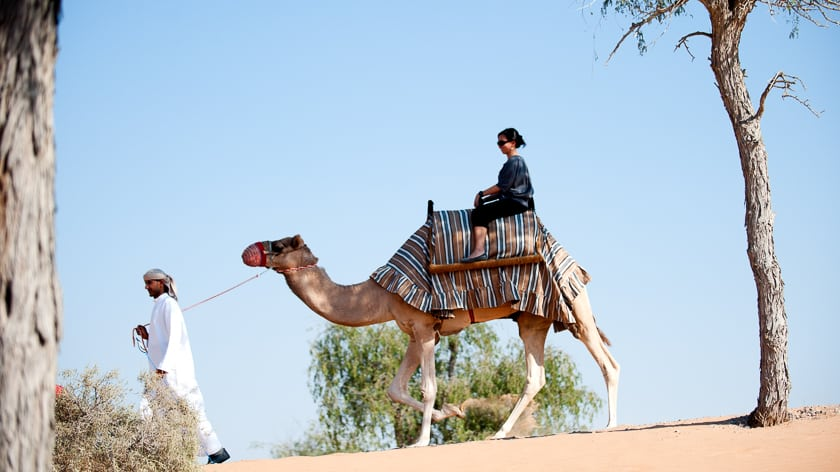The Ritz Carlton Ras Al Khaimah, Al Wadi Desert, Camel Riding